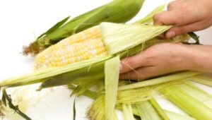 never put corn husks in drain